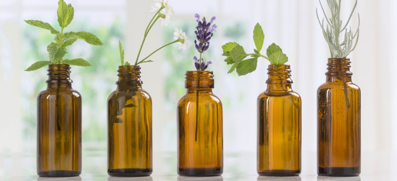 Expand your herbal education by digging deeper into the culinary, medicinal, and magickal properties of herbs, fruits, and essential oils.