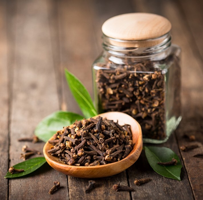 Expand your herbal education by digging deeper into Cloves.