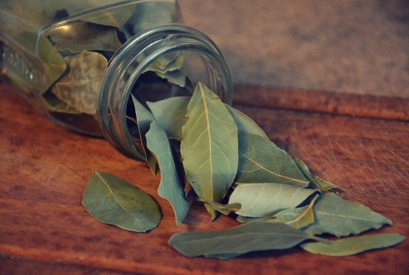 Expand your herbal education by digging deeper into Bay Leaves.