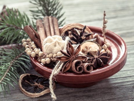 Expand your herbal education by digging deeper into Anise.