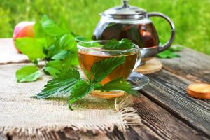 Stinging Nettle Infusion for Strong Hair, Nails, and Teeth